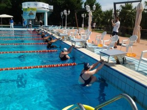 Grande Successo A Saronno Del Nuoto In Vasca Corta Fisdir