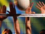 a-scala-la-scuola-di-pallavolo-della-netgroup-voll-20773